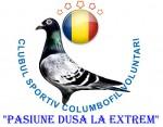 Logo Voluntari 550-400